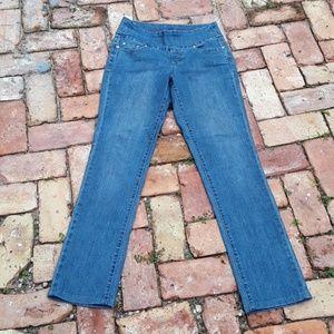 JAG Jeans Straight Leg Blue Stretch Denim Sz 4